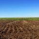 Achat d'une terre agricole