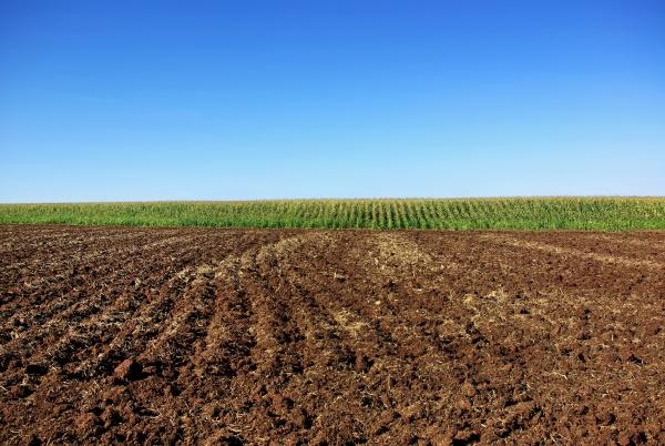 Reprise Des Terres Agricoles En Fermage Les Demarches