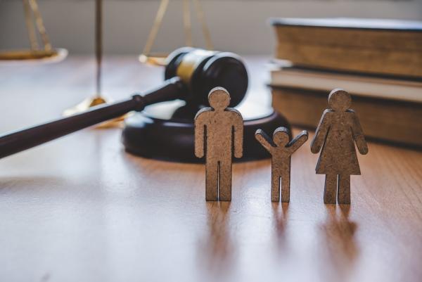 Comprendre le droit des familles